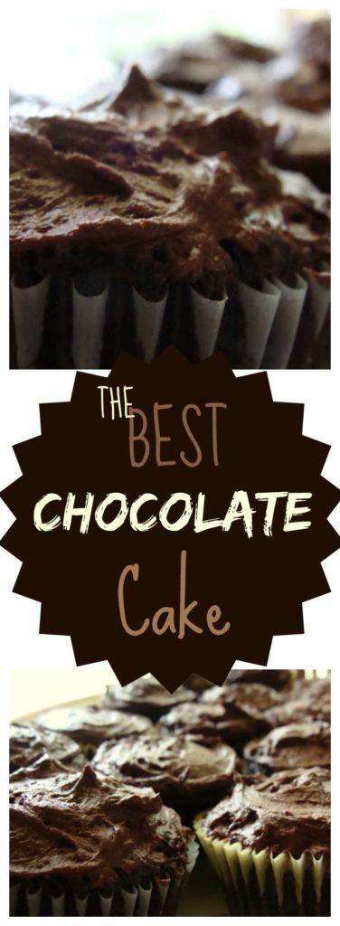 THE Best Chocolate Cake Recipe on www.sugarbananas.com