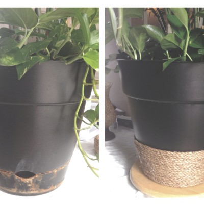 Cheap and Easy Indoor Houseplant Pot Makeover Rope