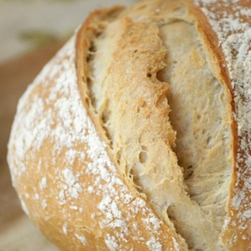 Crispy Chewy No Knead Bread Recipe