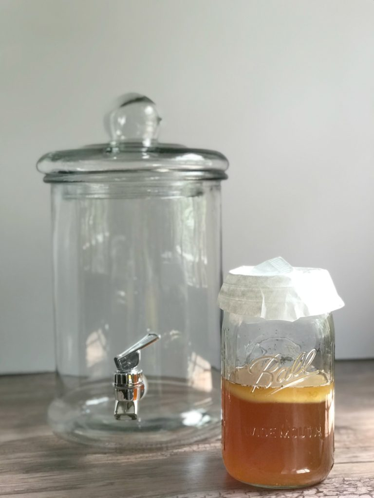 how to make kombucha from sugarbananas baby scoby and dispenser glass jar